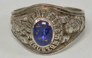 Princess Blue Ring front