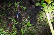 Bilemy shoes