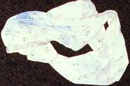 Lumberton undergarments