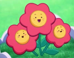 New flowers.png