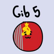 Getball