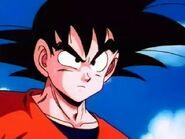 Adult Son Goku