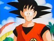 Grown up Son Goku