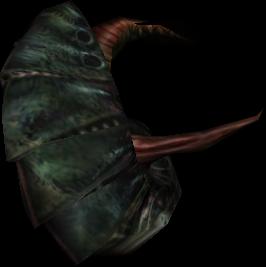Pinwheel Fish
