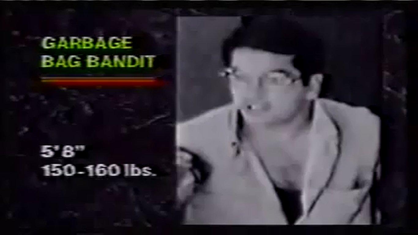 Garbage Bag Bandit
