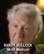 Sandy bullock.jpg