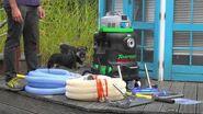 Rössle Torpedo Ultra - Inbetriebnahme Schlammsauger (Teichreinigung)