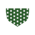 Bandana Green 187