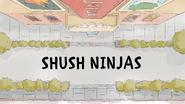 Shushninjas