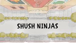 Shushninjas.png