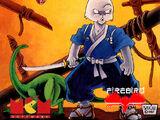 Samurai Warrior: The Battles of Usagi Yojimbo