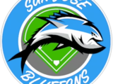 San Jose Bluefins