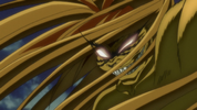 OP1 - Tora's hair extending2