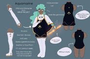 Aquamarine reference sheet