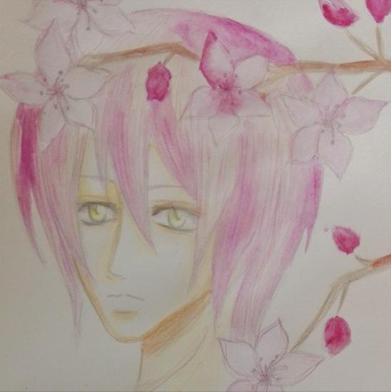 春の歌 (Haru no Uta)/Stranger