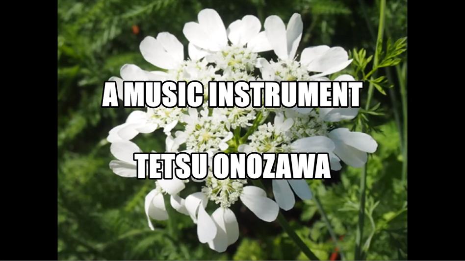 A Music Instrument