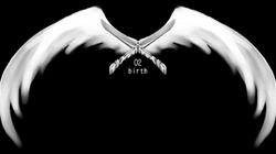 02 birth.png