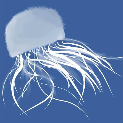 A Swim In The Jellyfish Lake