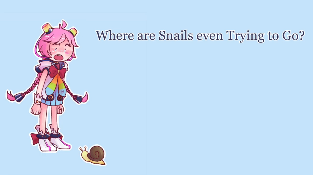 Where Are Snails Even Trying To Go?
