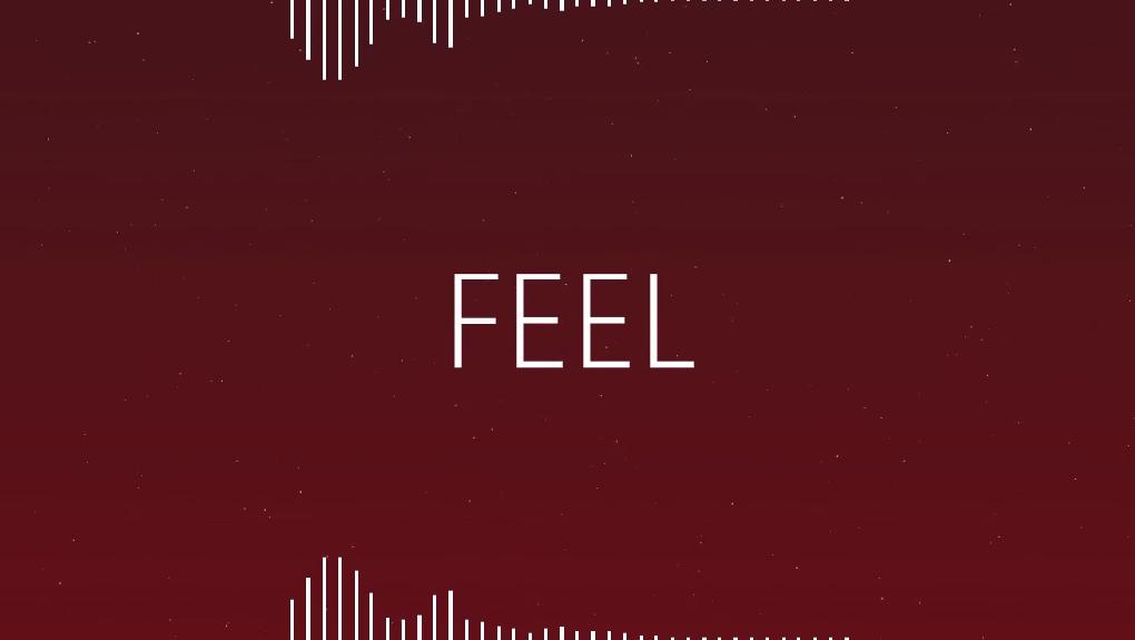 FEEL/Turbo-P