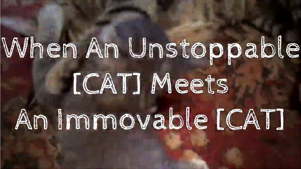 When An Unstoppable CAT Meets An Immovable CAT