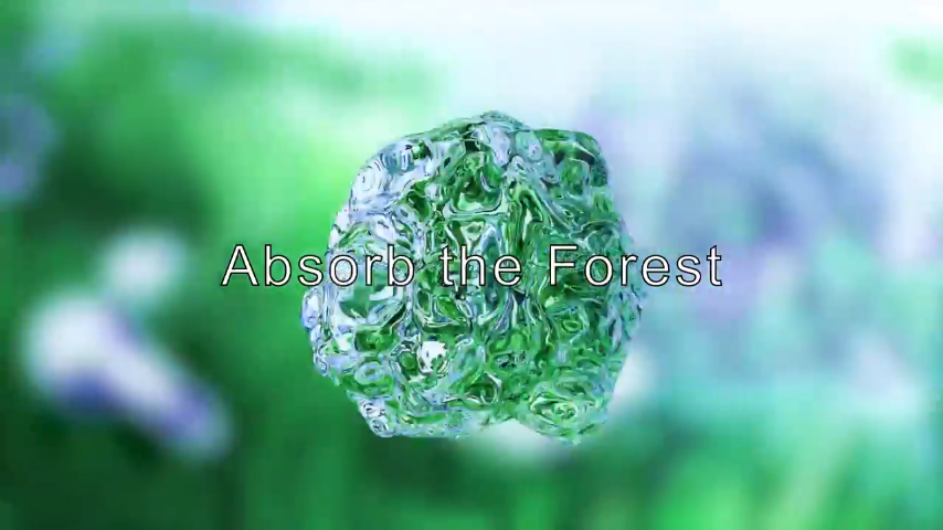 Absorb the Forest