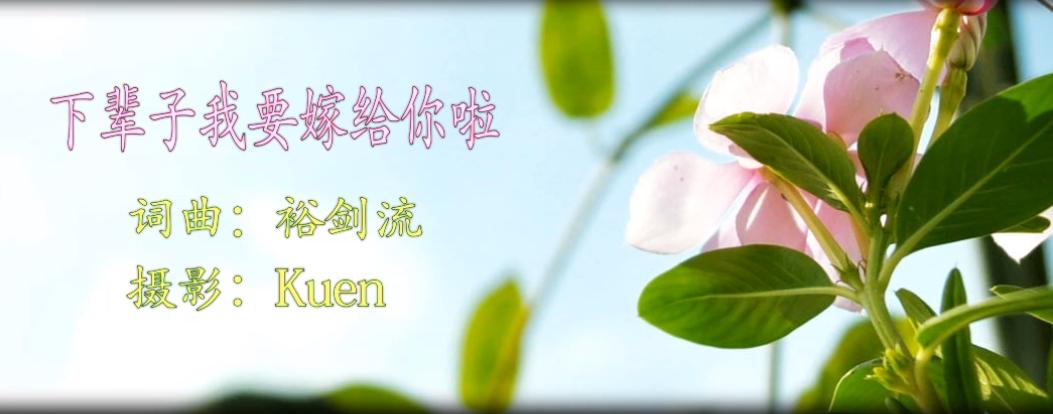 下辈子我要嫁给你啦 (Xiàbèizi Wǒ Yào Jià Gěi Nǐ La)