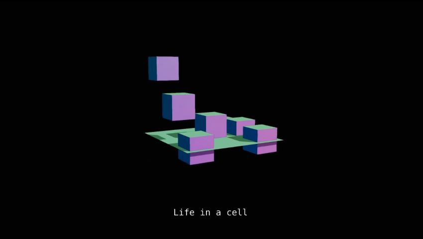 Life In A Cell