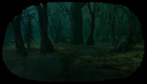 Biome swamp.png