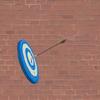 Bullseye Spray