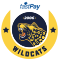 Istanbul Wildcatslogo square.png