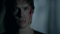 810-098~Stefan-Damon
