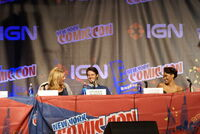 2010 NYCC 08