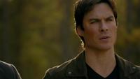 814-049~Stefan-Damon