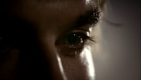 103~Elena-Damon-Compulsion