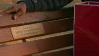 TO512-043-Matt's Bench