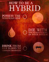 Hybrid-cworiginals-Twitter