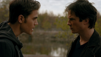 814-050-Stefan-Damon