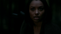 721-110~Damon-Bonnie