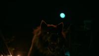 LGC310-102-Finch-Werewolf