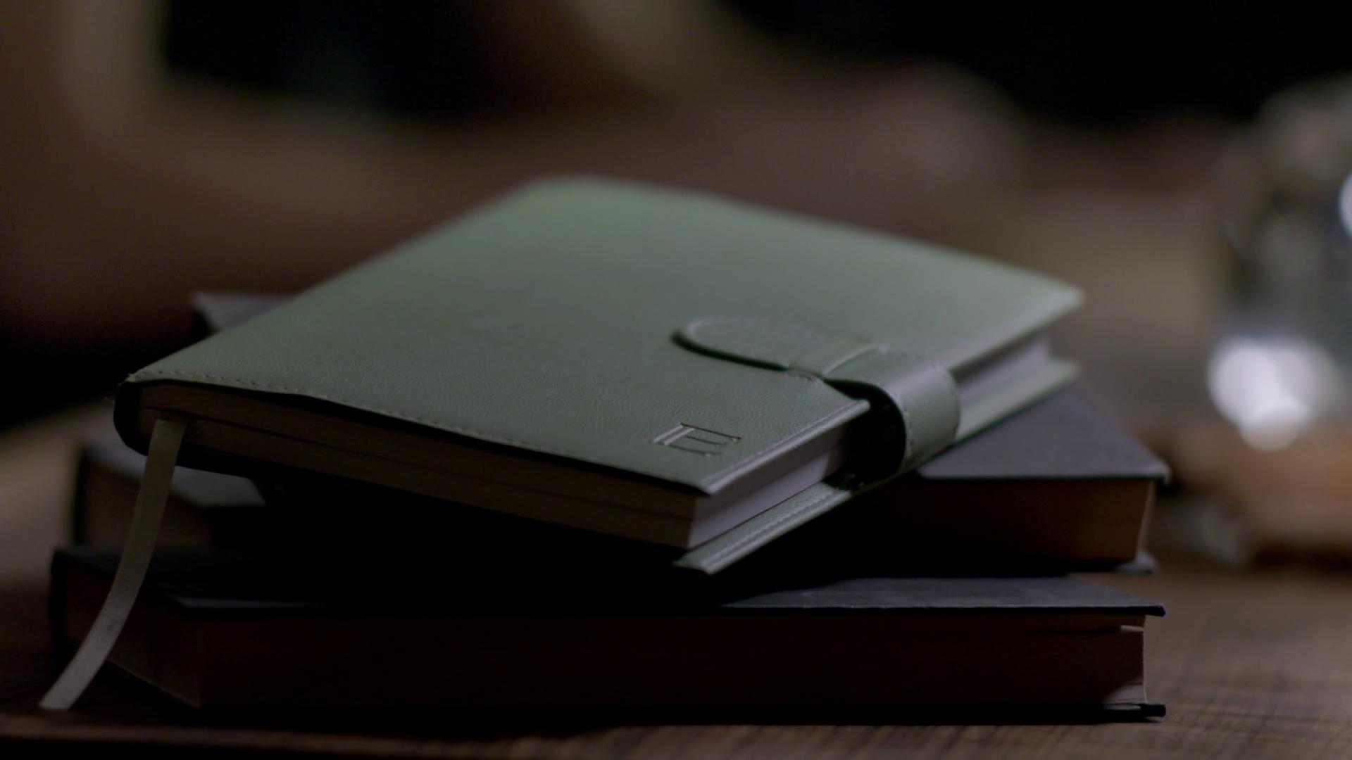 Elena's Diary