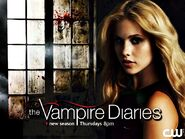 Season-4-promo-wallpaper-the-vampire-diaries-32578932-1023-768