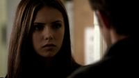 105-021-Elena~Stefan