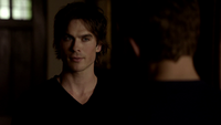 102-063~Stefan-Damon
