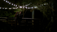 101-097-Elena-Stefan-The Fall