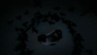 TO404-034~Hayley~Hope~Birds