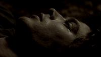 105-002~Stefan-Damon
