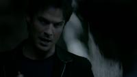 815-037~Stefan-Damon