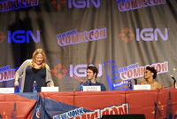 2010 NYCC 11