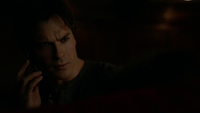 721-081~Stefan-Damon